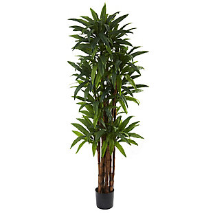 Nearly Natural  6.5' Dracaena Tree, , large