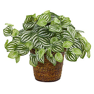 """Nearly Natural  13"""" Watermelon Peperomia Artificial Plant in Basket (Real Touch), , large"""