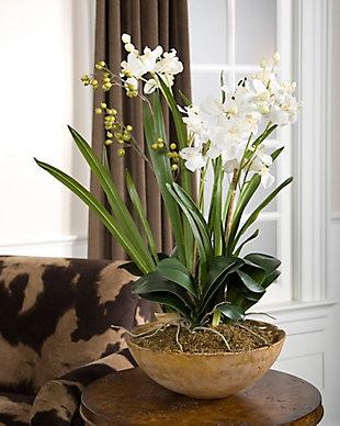 Uttermost  Moth Orchid Planter, , rollover