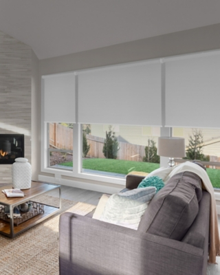 Buy Chicology Cordless Roller Shades, Byssus White, 51