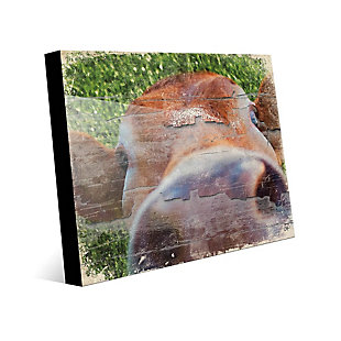 Close Up Cow Alpha 24X36 Acrylic Wall Art, Green/Brown, large