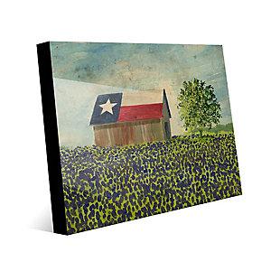 Texas Barn Alpha 24X36 Acrylic Wall Art, Multi, large