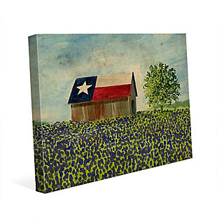 Texas Barn Alpha 24x36 Canvas Wall Art, Multi, rollover
