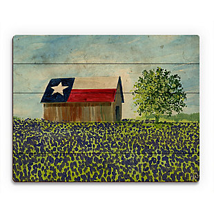 Texas Barn Alpha 20X24 Wood Plank Wall Art, Multi, rollover