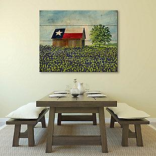 Texas Barn Alpha 20X24 Wood Plank Wall Art, Multi, large