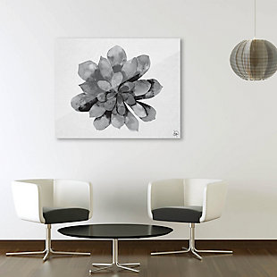 Succulent Watercolor Black and White 24X36 Acrylic Wall Art, Black/Gray/White, rollover