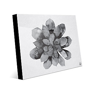 Succulent Watercolor Black and White 24X36 Acrylic Wall Art, Black/Gray/White, large