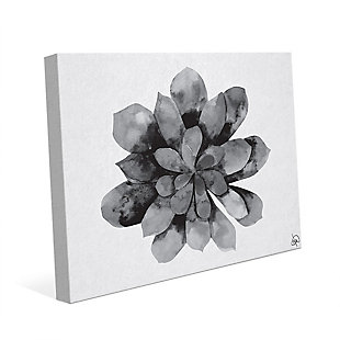 Succulent Watercolor Black and White 24X36 Canvas Wall Art, Black/Gray/White, large