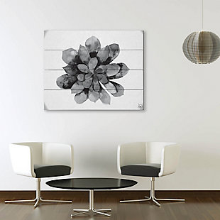 Succulent Watercolor Black and White 20X24 Wood Plank Wall Art, Black/Gray/White, rollover