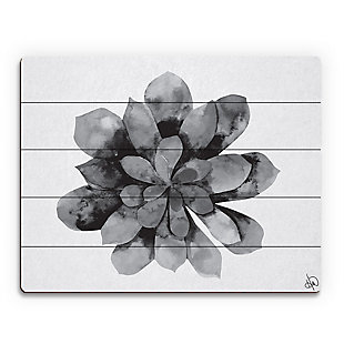 Succulent Watercolor Black and White 20X24 Wood Plank Wall Art, Black/Gray/White, large