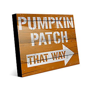 Pumpkin Patch That Way 24X36 Acrylic Wall Art, Multi, large