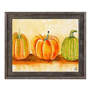 Pumpkins Beta 24X36 Barnwood Framed Canvas, Orange, large