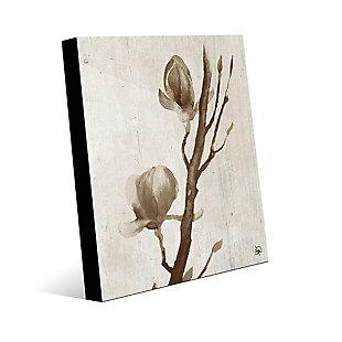 Blossom Beta 20X24 Acrylic Wall Art, , large