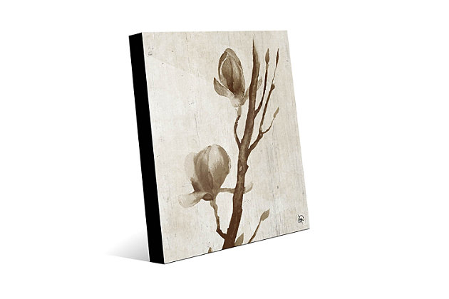 Blossom Beta 20X30 Acrylic Wall Art, Brown, large