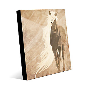 A Horse In The Wind Brown 24X36 Acrylic Wall Art, Brown, large