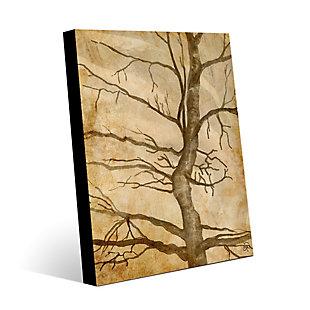 Scraggly Tree Gamma 24X36 Metal Wall Art, Brown, large