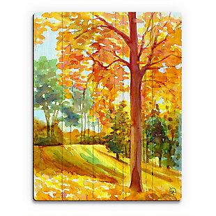 Autumn Park Wood 20X24 Wood Plank Wall Art, Orange, large