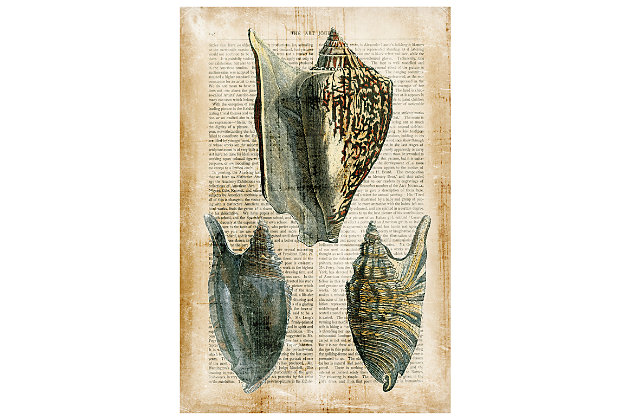 Home Accents Seashells Glass Art, , large