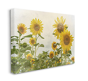 Sunflower Garden Farm 36x48 Canvas Wall Art, , large