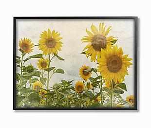 Sunflower Garden Farm 24x30 Black Frame Wall Art, Beige, large