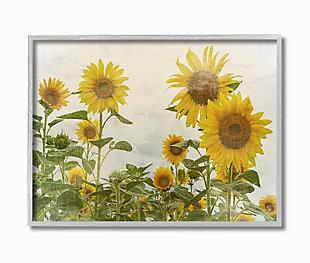 Sunflower Garden Farm 16x20 Gray Frame Wall Art, Beige, large