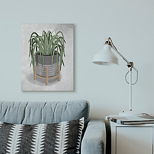 Friendly Spider Plant 24x30 Canvas Wall Art, , rollover