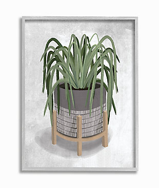 Friendly Spider Plant 16x20 Gray Frame Wall Art, , large