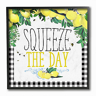 Squeeze The Day Kitchen Humor 12x12 Black Frame Wall Art, , large