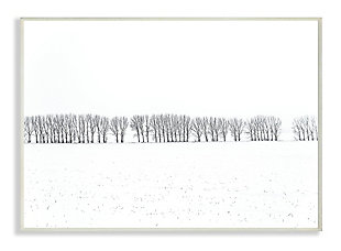 Winter Tree Line Photograph 13x19 Wall Plaque, White, large