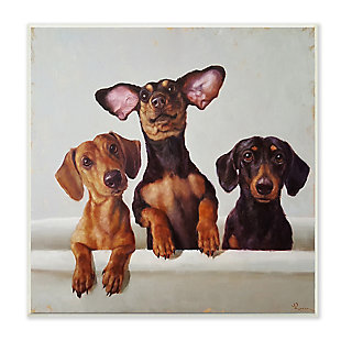 Dachshunds in the Tub Pet Dog Bathroom 12x12 Wall Plaque, , large