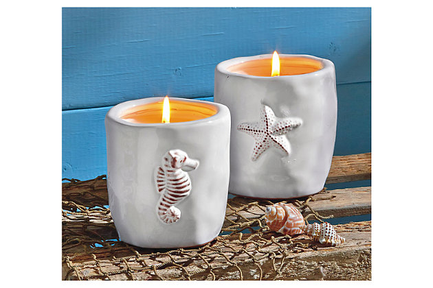 Home Accents Star Fish Citronella Candle by Ashley HomeStore, White