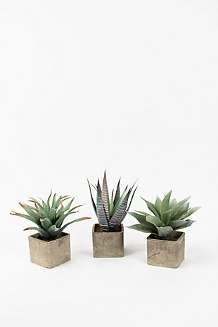 Set of Three Large Artificial Succulents In Square Pots, , large