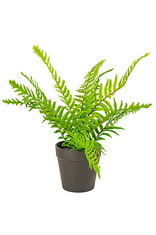 Artificial Potted Fern (Box of 4), , large