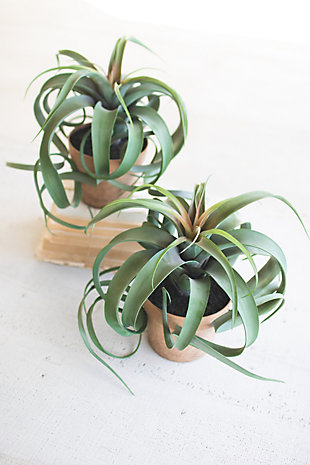 Artificial Airplant In a Pot (Box of 2), , rollover