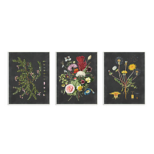 Botanical Chalkboard Flowers Illustrations 3pc 10x15 Wall Plaque, , large