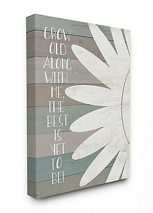 Grow Old Along with Me 30x40 Canvas Wall Art, Multi, large