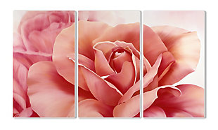 Fresh Pink Roses 3-Piece Triptych 11x17 Canvas Wall Art, , large
