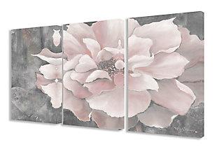 3 Piece Pastel Pink Peony 3pc Set 16x24 Canvas Wall Art, Multi, rollover