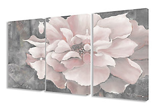 3 Piece Pastel Pink Peony 3pc Set 16x24 Canvas Wall Art, Multi, large