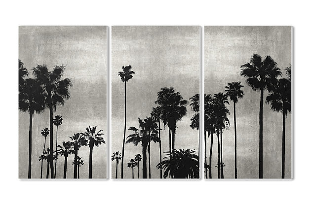 Black And White Photography Palm Tree Silhouette Scene 3pc Set 11x17 Canvas Wall Art, Multi, large