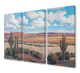 Painterly Desert Heat Scene With Cactus And Clouds Triptych 3pc 16x24 Canvas Wall Art, Multi, large