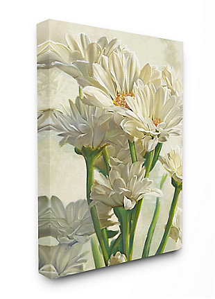 Study of White Daisy Petals 36x48 Canvas Wall Art, White, large
