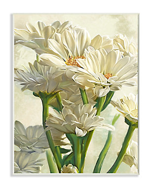 Study of White Daisy Petals 13x19 Wall Plaque, White, large