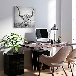 Black and White Highland Cow 36x48 Canvas Wall Art, Multi, rollover