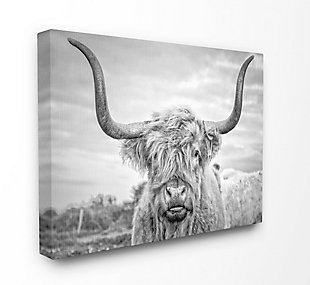 Black and White Highland Cow 36x48 Canvas Wall Art, Multi, large