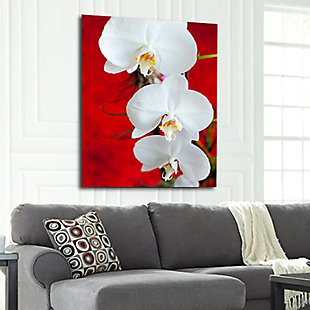 """White Orchid 32"""" x 48"""" Red and White Reverse Printed Acrylic, , rollover"""