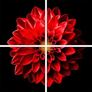 """Blooming 48"""" x 48"""" Red and Black Reverse Printed Acrylic (4 Piece Set), , large"""