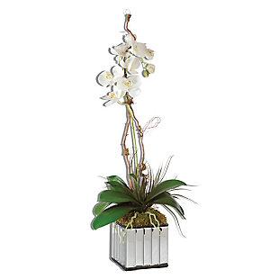 Uttermost White Kaleama Orchids, , large