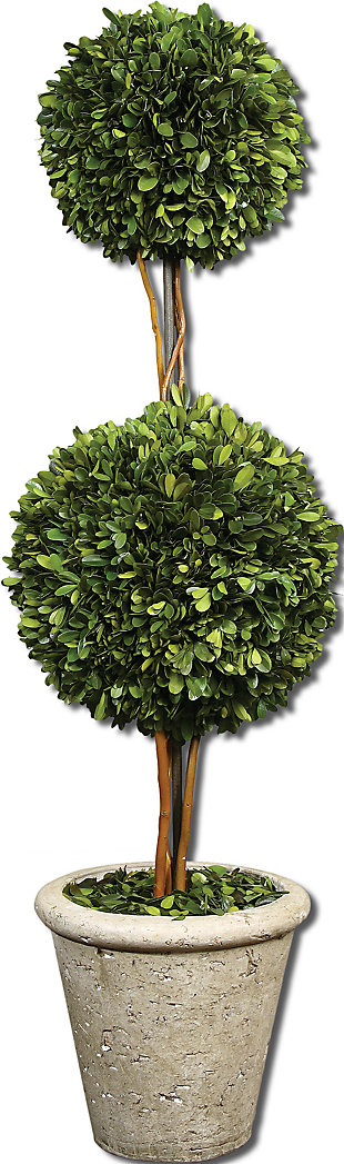 Uttermost Two Sphere Topiary Preserved Boxwood, , large