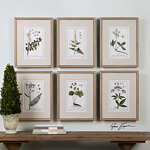 Uttermost Green Floral Botanical Study Prints Set of 6, , rollover